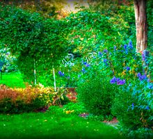 The Lovely Garden by Monica M. Scanlan