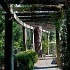 Garden Trellis by Joe Jennelle