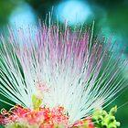 Vibrant Silk Flower by Melissa Thorburn