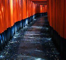 Fushimi Inari, Kyoto by Skye Hohmann