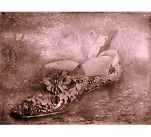 """Anyone Seen Cinderella ?..."" Photographic Print"