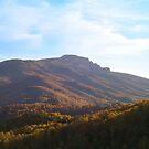 Grandfather Mountain by Annlynn Ward
