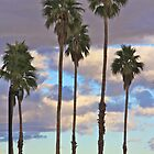 Palm Trees and Desert Sunset by John Butler