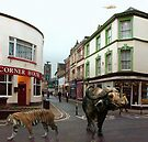 Joy Street - Barnstaple. by Simon Groves