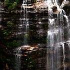 Blue Mountains, White Water by Steve Munro