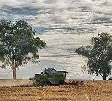 Farming at OakHill by Kat36