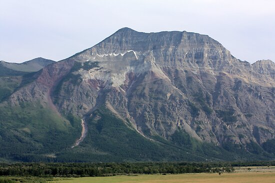 Waterton Lakes National Park  by Alyce Taylor