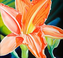 """""""King for a Day"""" - orange day lily by James  Knowles"""