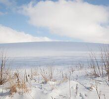 Rohden Hilltop #1 by Kim Hansen