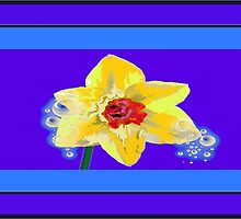 Daffodil with tears  by designmeacard