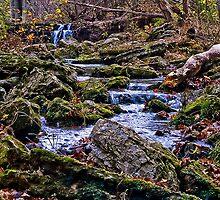 BoBo Creek by Ray Wells