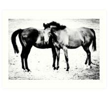 Equus II Art Print