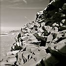 Stones on the beach near Biarritz by Bugarach