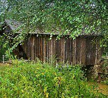 Stovall Mill Bridge by Chelei