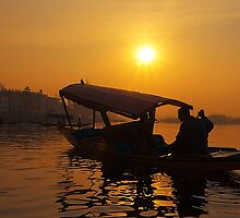 Golden Moment At Dal Lake by Mukesh Srivastava