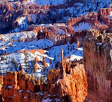 Winter Morning, Bryce Canyon by Harry Oldmeadow