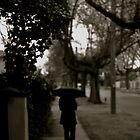 Walk down Rowell Avenue by HarryHasapis