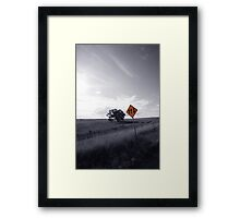 Two Go Up, One Comes Down Framed Print