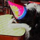 WHAT?? No Cake !!! by AnnDixon