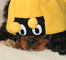 The Unhappy Bumble Bee by AnnDixon