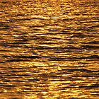 Shimmering River of Gold by umang