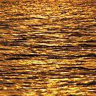 Shimmering River of Gold by umang
