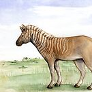 historical quagga by Danelle Malan