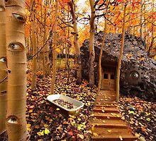 The Perceptual Garden by Dale O'Dell