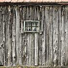 Winter lodge by Milos Markovic
