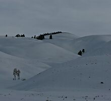 Lamar Valley North - Winter View #3 by Ken McElroy