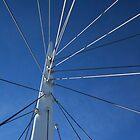 Wired In (Denver, Colorado) by Brendon Perkins