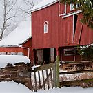 The Greeting Card Barn by Scott  Hafer