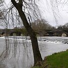 Kells Bridge & Kings River,Kells,Co. Kilkenny,Ireland. by Pat Duggan