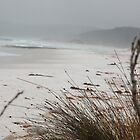 Friendly Beaches, East Coast Tasmania by paulinea