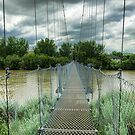 Suspension Bridge  by Myron Watamaniuk