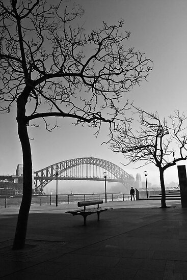 Misty Sydney morning by Sheila  Smart