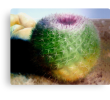 """Spike"" - oil painting of a cactus Canvas Print"