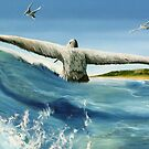 &quot;Catching in a Wave&quot; oil painting of pelicans  by James  Knowles