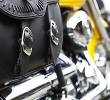 HD buckles by Ell-on-Wheels