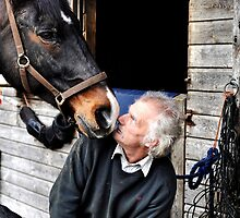 Farrier & horse heated conversation by Darren Bailey LRPS