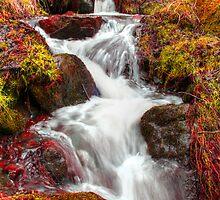 Autumn Falls by PDonovan
