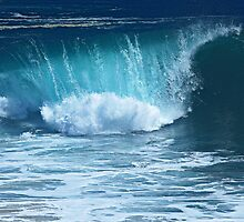 The Curl (The Wedge, Newport Beach, California) by Brendon Perkins