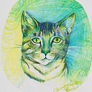 mrs. p's cat by Xtianna