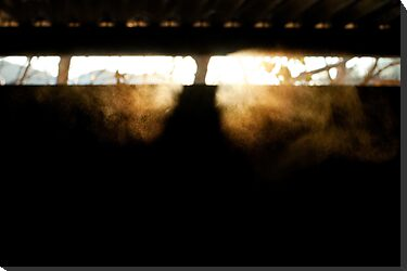 Frost smoke at sunset in our garage by Bjarte Edvardsen