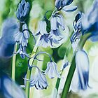 """Bluebells"" - oil painting of bluebells in the English forest by James  Knowles"