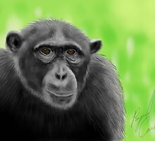 Wildlife iPad Art by Raymond Cassel by Ray Cassel