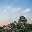 Himeji Castle - Hyogo Ken, Japan by Craig Baron