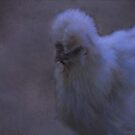 Japanese chicken by Judi Taylor