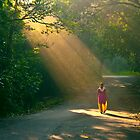 spot light of the forest!! by Dinni H