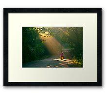 spot light of the forest!! Framed Print